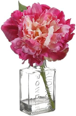 Tori Home Peony in Glass Vase Set of 12 Color Fuschia Pink