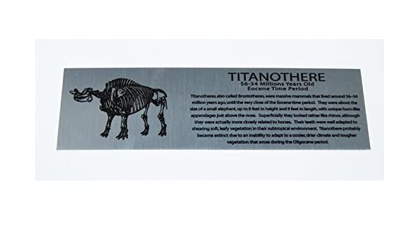 Titanothere Brontothere Extra Large Metal Display Label #1793
