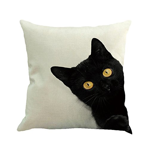 Clearence Home Pillowcase KpopBaby Cat Square Decoration Car Sofa Bedroom Cushion Cover