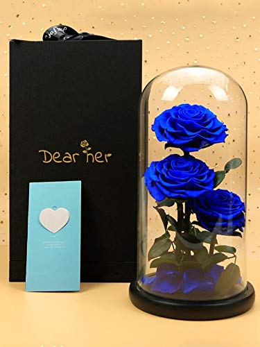 Dear her Beauty and The Beast Rose Handmade Preserved Flowers Forever Roses Bluelover in Glass Dome Gift Box Best Gift for Her, Anniversary Valentine Birthday Wedding, for Girls Wife Mother -