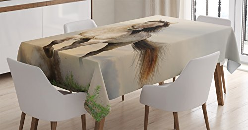 Animal Decor Tablecloth by Ambesonne, Wild Young Stallion Horse Running at Sunset Male Power Nake Muscular Physique Nobility Photo, Dining Room Kitchen Rectangular Table Cover, 60 X 90 Inches, - Nake Teen Girl