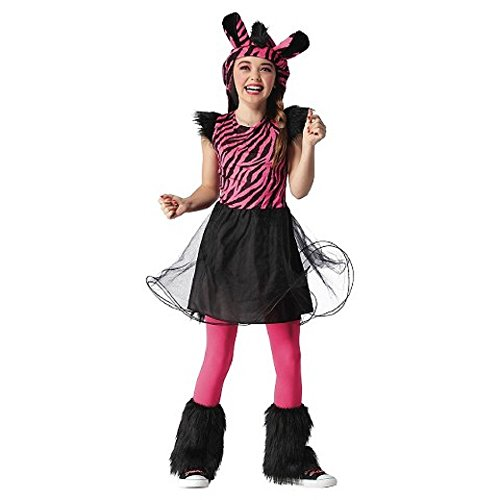 Girl's Pink Zebra Dress Costume (Medium (Target Kids Costume)