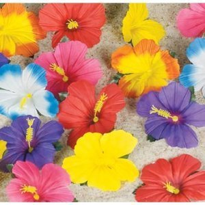 Hibiscus Flowers for Tabletop Decoration (24) (Tropical Flowers)