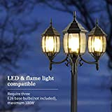 PARTPHONER Outdoor Lamp Post Light 3-Head, Classic
