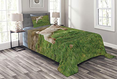 Lunarable Goat Bedspread, Baby Farm Animal Jumping Around Playing in The Spring Blurred Background, Decorative Quilted 2 Piece Coverlet Set with Pillow Sham, Twin Size, Fern Green ()
