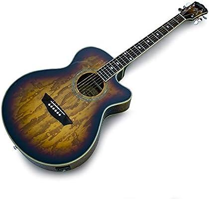 Washburn EA180TS - Guitarra electroacústica, tabaco: Amazon.es ...
