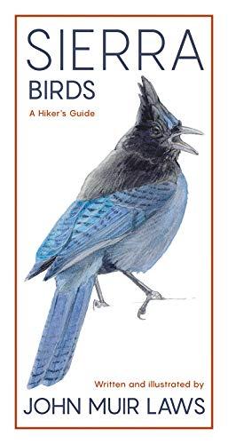 Sierra Birds: A Hiker's Guide