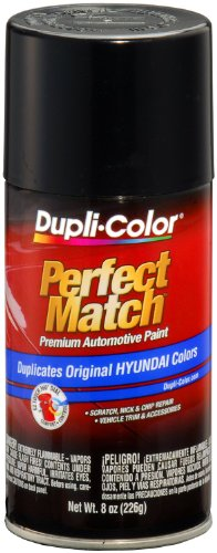 Ebony Accents (Dupli-Color BHY1803 Ebony Black Hyundai Perfect Match Automotive Paint - 8 oz.)