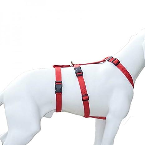 Feltmann NoExit Brustgeschirr ausbruchsicher, Soft, Uni, Sicherheitgeschirr für Hunde Uni Schwarz 30-50cm 15mm Hoffmann GmbH