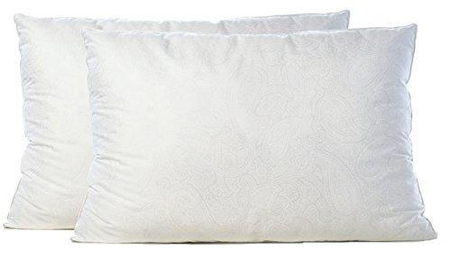 Gusseted Pillow Queen 2 Pack - Premium Gel Fiber