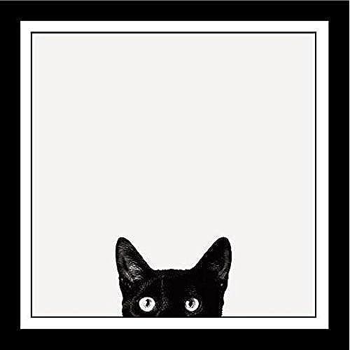 FRAMED Curiosity Black Cat By Jon Bertelli 11x11 Art Print Poster Wall  Decor Black And White Photograph Of Kitty Kitten Peeking