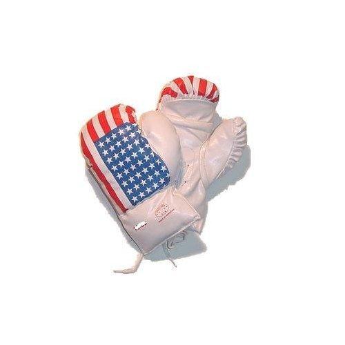 USA Flag Boxing Gloves Size Children's 6 Oz by Roger Enterprises (Image #1)