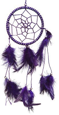 "DreamCatcher ~ Purple DreamCatcher with Feathers ~ Approx 3.5"" Diameter 1 Foot Long"
