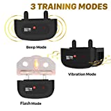 TBI Pro Dog Training Collar with Remote - Shock