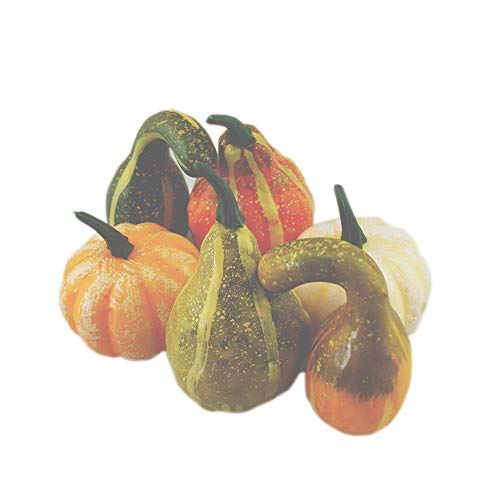 Vicky Wheeler Halloween Pumpkins Decorations,6PCS Halloween Assorted Fake Pumpkins Fake Vegetables for Home Family Kitchen Table Decoration (6PCS)