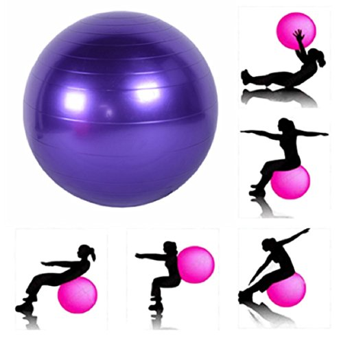 JERN Rubber Exercise Gym Ball, Size 65 cm,  Purple