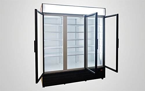 The 8 best commercial glass coolers