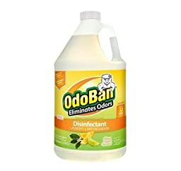 OdoBan 1 gal. Citrus Odor Eliminator and Disinfectant Multi-Purpose Cleaner Concentrate