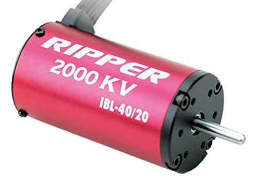 Thunder Tiger RC 2340 Ripper Brushless Motor 1/8 Scale for IBL 40/20 2000kV - Thunder Tiger Brushless Motors