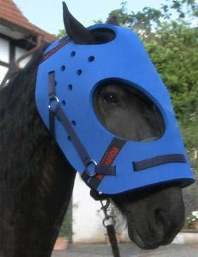 EquiVizor Multi-Purpose Helmet for Horses (Full) by EquiVizor (Image #6)