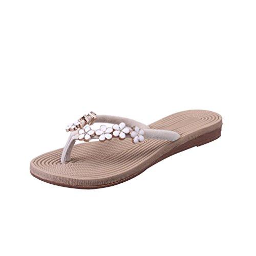 infradito moda Beige sandali fiore da Yanhoo®Donne Sandali Scarpe spiaggia solido pantofola Donna colore scarpe Donna wI8x61qS