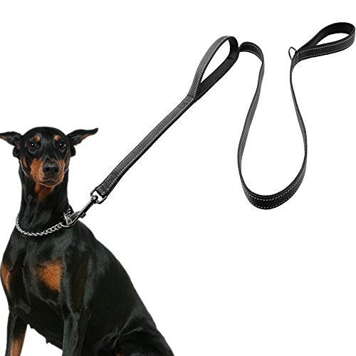 Dog Leash for Large Dogs, 2 Handles for Extra Control, 6 FT Long with Reflective Stitch for Night Walking