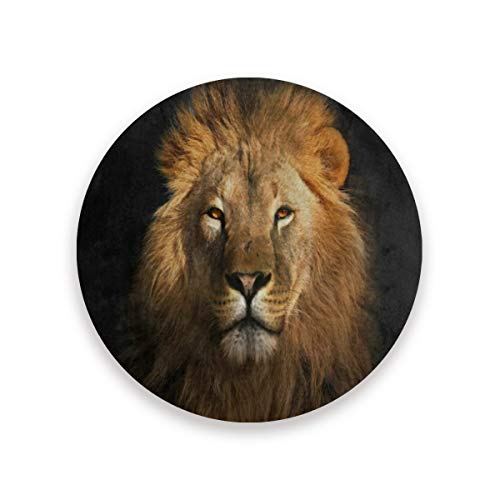 Love beautiful Art Lion Black Coasters
