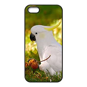 White Parrot Hight Quality Plastic Case for Iphone 5s by lolosakes