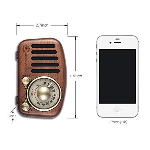 Bluetooth speaker with radio