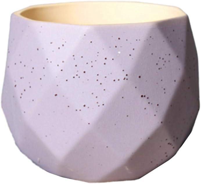 ZUOLUO Macetas Ceramica Maceta Ceramica Macetas de Interior Macetas para Plantas Planta Alta Olla Semillas de ollas Planta de Interior Olla Pequeñas Macetas Purple