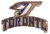 Toronto Blue Jays Primary Plus Logo Pin