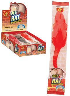 Gummy Giant Rats 12CT Box (Jelly Rat)