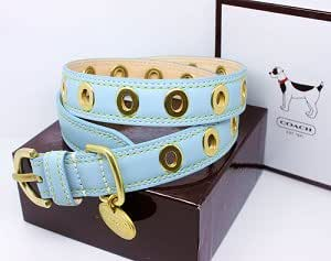 "COACH Gold Grommets Turquoise Leather Collar with Engraveable Charm 60112 Limited Edition - Gold/Turquoise, S (11""-13"")"