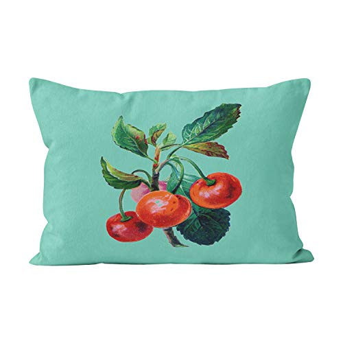 Skully Beauty Boudoir Vintage Cherry Branch Print Reversible Cotton Hidden Zipper Home Decorative Rectangle Throw Pillow Cover Cushion Case 12x20 inch One Side Design Printed Pillowcase ()