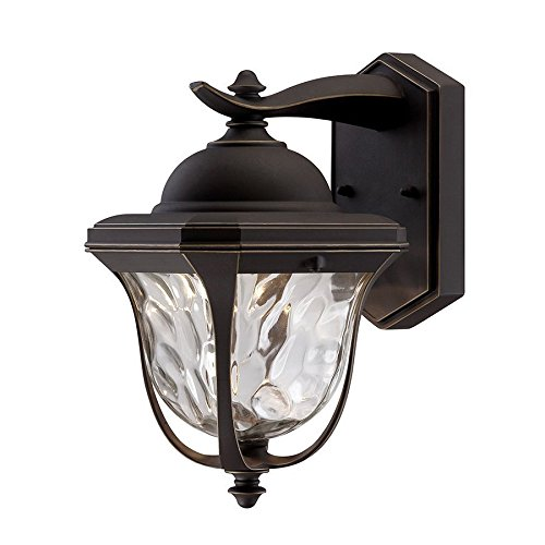 Designers Fountain EV7066-246 11 in. LED Aged Bronze Patina Outdoor Wall Lantern with Clear Hammered Glass Shade,