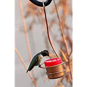 CopperHummingbird Bee and Wasp Proof Copper Hummingbird Feeder