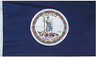 product image for All Star Flags 3x5' Virginia Heavy Weight Nylon Flag from