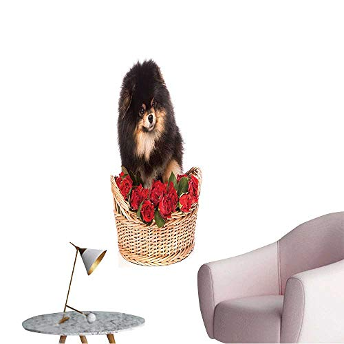 Wall Painting Pomeranian Spitz Dog in The Basket with Flowers on White Background High-Definition Design,16