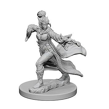 Pathfinder: Deep Cuts Unpainted Miniatures: Elf Female Sorcerer
