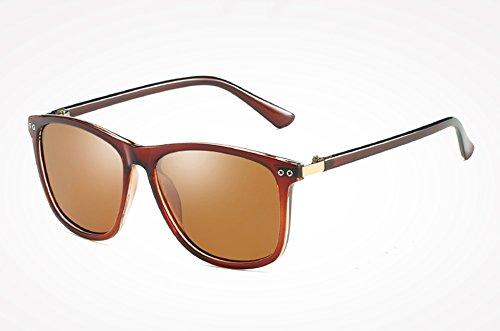 Sol Gafas Sol Negro de de brown Hombre de Espejo TL polarizadas Espalda Masculino Gafas de Alta Sunglasses Gris Mujer Calidad Sol Gafas Femenino Moda qO61axwC