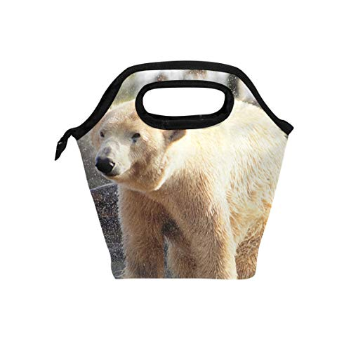 Wild Animals Lunch Box - Lunch Bag Polar Bear Nature Wild Animal Insulated Lunchbox Thermal Portable Handbag Food Container Cooler Reusable Outdoors Travel Work School Lunch Tote