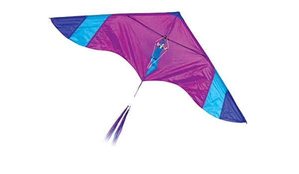 Amazon com: Go Fly A Kite Hang Glider Kite: Toys & Games