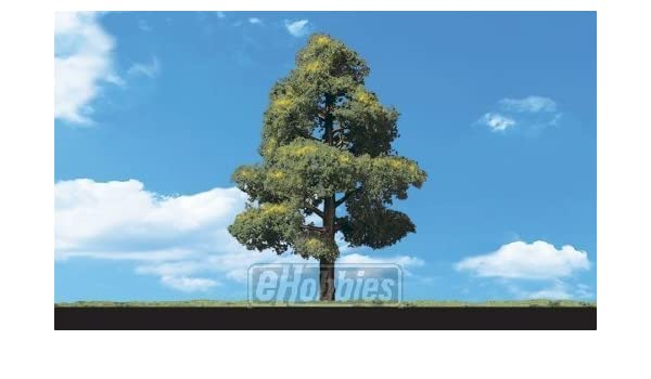 Sun Kissed Deciduous Trees 6 To 7 2//Pkg