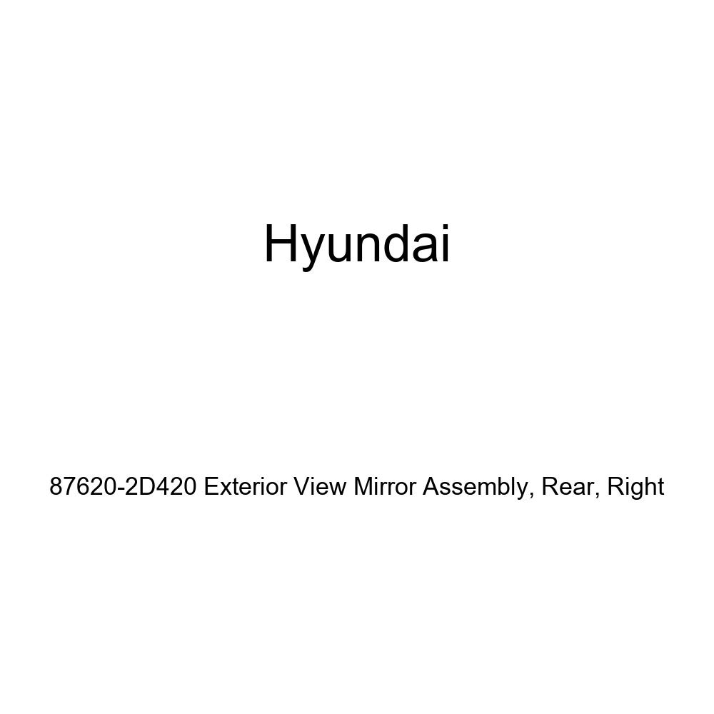Right Genuine Hyundai 87620-2D420 Exterior View Mirror Assembly Rear