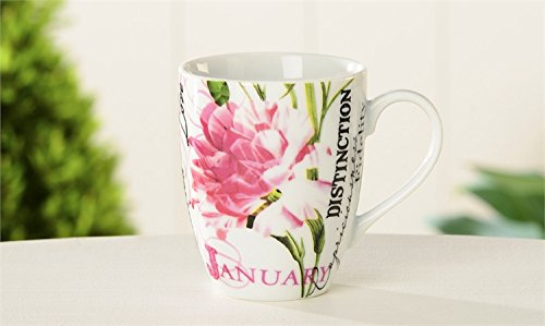 January Carnation and Garnet Birth Month Porcelain 10 Ounce Birthday Mug Beautifully Boxed Featuring Birth Flower and Birthstone