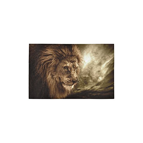 InterestPrint Safari Animal Brown Lion Polyester Area Rug Floor Mat 2'7 x 1'8, African Wildlife Print Throw Rugs Carpet Collection for Living Dining Room Home Decoration