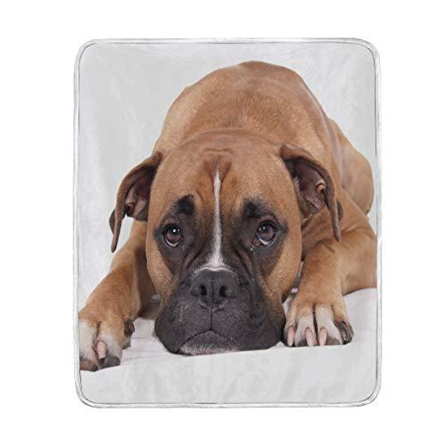 DEYYA Beautiful Boxer Dog Velvet Plush Throw Blanket Cozy Warm Lightweight Blankets for Couch Bed Sofa, 50