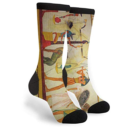 Egyptian Tomb Paintings Dress Funny Crazy Casual Cotton Crew Socks Novelty Socks Gifts for Mens Womens -