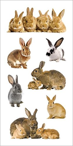 Paper House Productions ST-2221E Photo Real Stickypix Stickers, 2-Inch by 4-Inch, Bunnies Bunny Rabbit Stickers