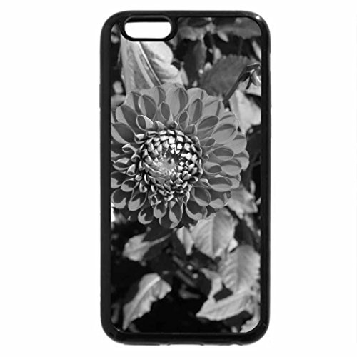 iPhone 6S Plus Case, iPhone 6 Plus Case (Black & White) - A Fine day at the Garden 40